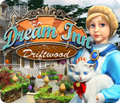 Dream Inn: Driftwood