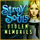 Stray Souls: Stolen Memories