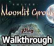 Shiver: Moonlit Grove Walkthrough 11
