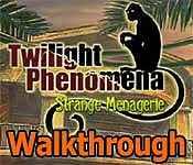 Twilight Phenomena: Strange Menagerie Walkthrough 18