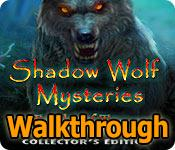 shadow wolf mysteries: tracks of terror collector's edition walkthrough