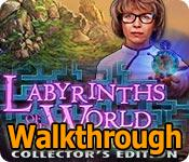 Labyrinths of the World: Changing the Past Walkthrough