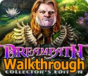 dreampath: curse of swamps collector's edition walkthrough