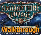 amaranthine voyage: winter neverending collector's edition walkthrough
