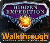 Hidden Expedition: Midgard's End Walkthrough