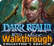 dark realm: lord of the winds collector's edition walkthrough