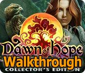 dawn of hope: skyline adventure collector's edition walkthrough
