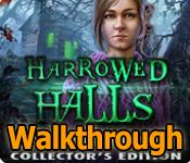 harrowed halls: lakeview lane collector's edition walkthrough