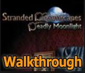 stranded dreamscapes: deadly moonlight collector's edition walkthrough
