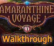 amaranthine voyage: the burning sky collector's edition walkthrough