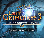 Lost Grimoires 3: The Forgotten Well Collector's Edition game feature image