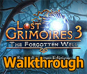 lost grimoires: the forgotten well collector's edition walkthrough