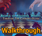bridge to another world: through the looking glass collector's edition walkthrough